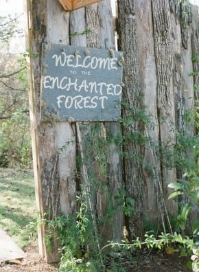 Enchanted forest at Southwind Hills by Jenny McCann.